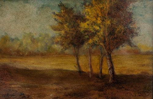 Field & Trees